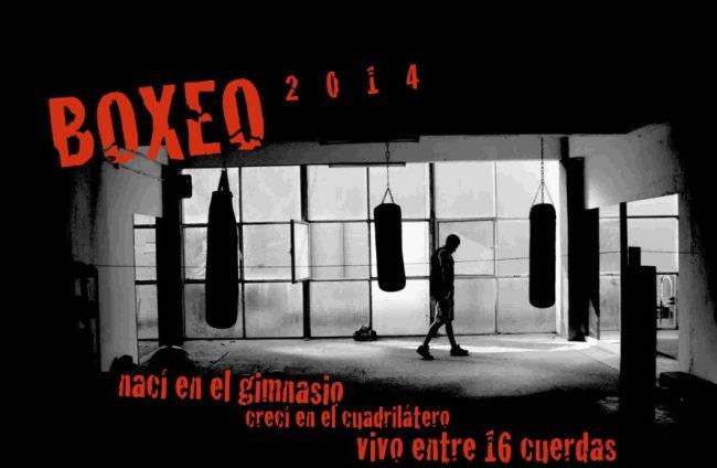 Portada calendario 2014 boxeo